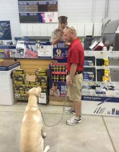 dog training wesley chapel
