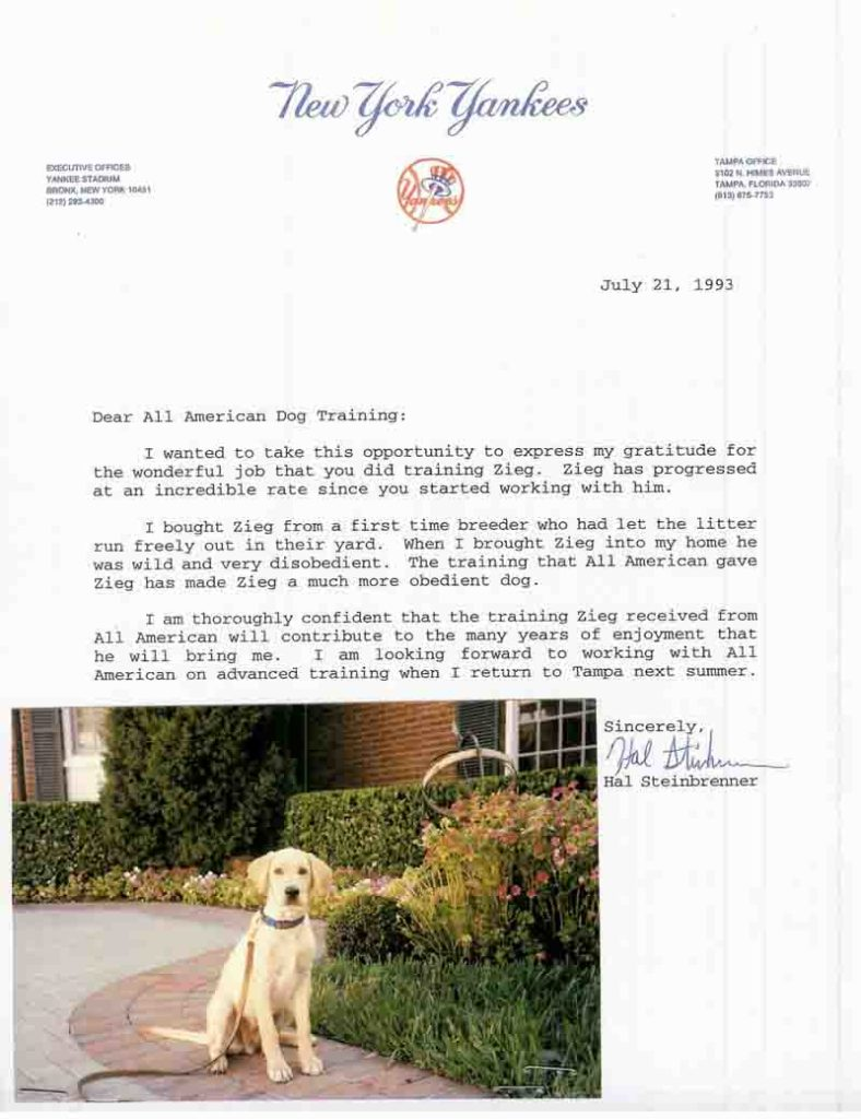 Dear All American Dog Training, I wanted to take the this opportunity to express my gratitude for the wonderful job that you did training Zieg
