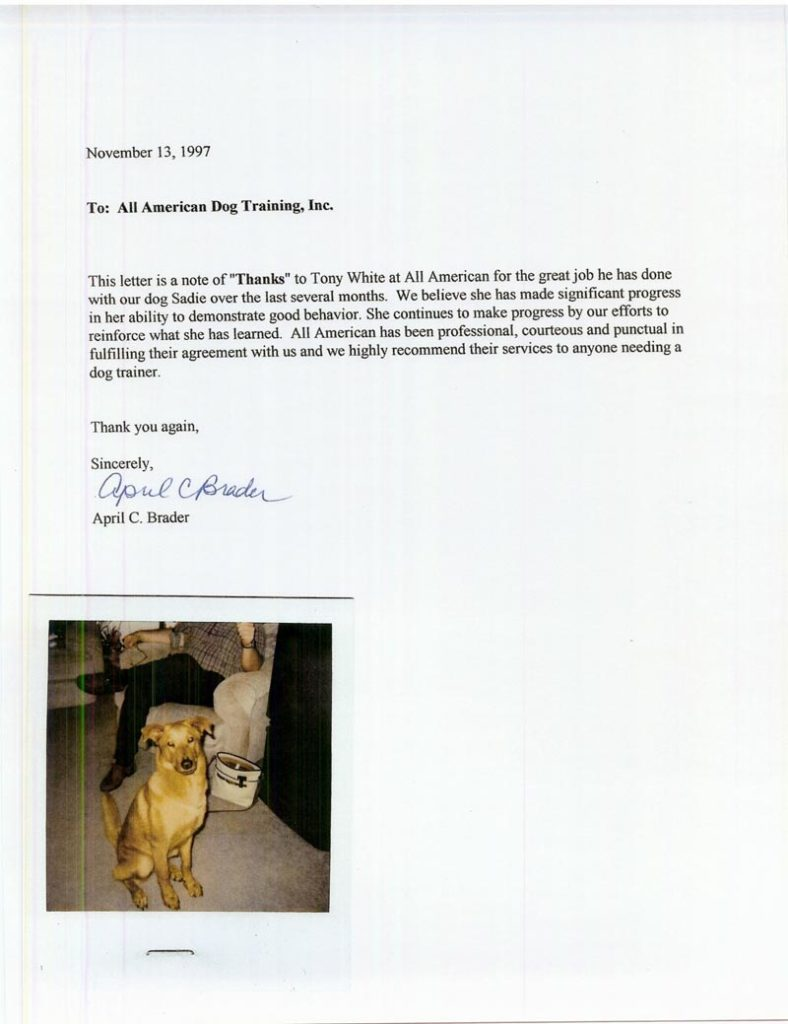 "This letter is a note of  ""thanks"" to Tony White at All American for the great Job he has done with our dog Sadie over the last several months Thank you again,"
